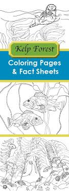 Marine Biology Coloring Book Pdf Periodic Tables