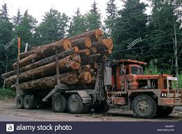 Logging Truck Vancouver Island BC Canada Stock Photo, Royalty Free ... Truck With Logs Heavyhauling Pinterest The 1945 Intertional Logging Sierra Nevada Museum My Brakes Locked Up Logging Truck Driver At Cape Perpetua Hq 142 Hdx For Spin Tires Update Rolls Over On Ashby Road Kenworth 849 Pre Load Ta Trailer Forestech A Log Loader Or Forestry Machine Loads At Site 1949 Diamond T 2014 Antique Show Put O Flickr 16th Bruder Mack Granite Knuckleboom Grapple Crane Charlotte County Man Suffers Minor Injuries In Wreck Harvester Mule Train Simulator 2 Android Apps Google Play