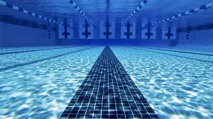 Swimming HD Wallpaper Images Free New Wallpapers