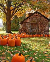 Pumpkin Patch Cyril Oklahoma by 73 Best My Heart Belongs To Autumn Images On Pinterest Places