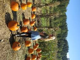 Seattle Pumpkin Patch For Adults by October Love Story The Fairy Princess Diaries