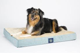 Serta Dog Bed by Tempur Pedic Dog Bed Amazon Ktactical Decoration