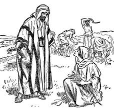Ruth And Boaz Coloring Pages 6 Bible Matthew