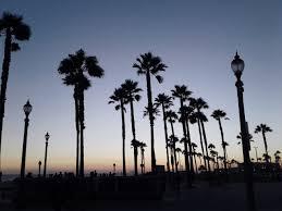 Huntington Beach Beautiful Beaches Photography Sunset Picture Picoftheday California Cali Skies Palm Trees Photographers On