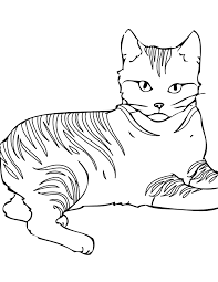 Coloring Pages Of Cats Free Printable Cat For Kids Line Drawings