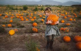 Where Did Carving Pumpkins Originated by Turn Your Pumpkin Activities Into A Learning Opportunity For Your Kids
