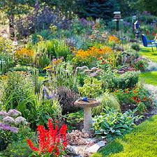 Attracting Insects To Your Garden by Attracting Songbirds To Your Garden