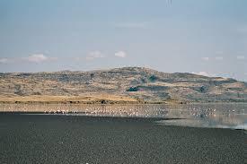 lake natron wikipedia