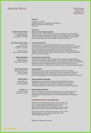 Unique Resume Sample Design Samples For Creative Professionals At Ideas
