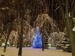 Christmas Tree Shop Near Albany Ny by Holiday Light Tours Star Transportation