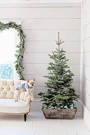 Types Of Christmas Trees To Plant by 21 Christmas Tree Stand Ideas French Farmhouse Christmas Tree