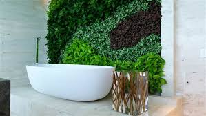 Plants In Bathroom Images by 3 Benefits Of Bathroom And Shower Plants Today Com