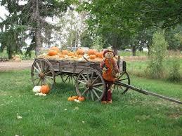 The Great Pumpkin Patch Pueblo Colorado by 10 Best Pumpkin Patches In Colorado