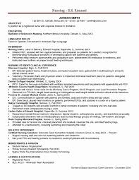 Icu Nursing Resume Samples Luxury Sample Registered Nurse Example Summary Examples Examp Large Size
