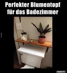 perfekter blumentopf für das badezimmer lustige bilder