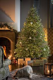 Fraser Christmas Trees Uk by 7 5ft Pre Lit Ridgedale Infinity Fir 100 Feel Real Artificial