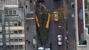 12 Ft Christmas Tree Sams Club by Shelton Spruce Selected As Rockefeller Center Christmas Tree