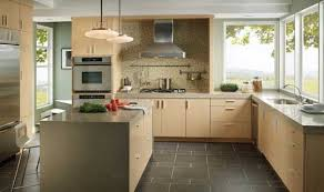 kitchen light colored kitchen cabinets home design ideas