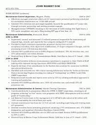 Resume Examples Templates Federal Example Format