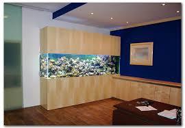 aquarium dans le mur instalation d un aquarium en deux jours