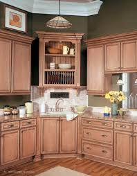 furniture remarkable modern kitchen wellborn cabinet