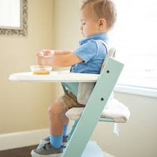 Evenflo Expressions High Chair Tray Insert by Non Toxic High Chair 2016 Http Jeremyeatonart Com Pinterest