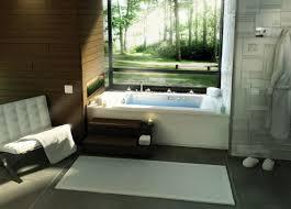Bathtub Transfer Bench Canada by Bathroom Transfer Bench Shower Bathroom Benches And Stools Small