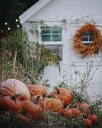 Pumpkin Patch Gainesville Texas by Pin By Demoiselle On Autumn All Saints Back To Pinterest