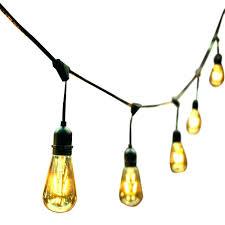 edison led bulbs dawnwatson me