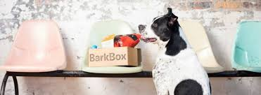 Still Working! BarkBox Coupon - First Box For Only $5! | MSA Barkbox Coupons Archives Subscription Box Mom Archive Black Friday Coupon Free Bonus Toy Every Month With Longer How Is Barkbox Delivered Birkcraft2s Blog The Best Dog Boxes Filled Toys Treats New First For Only 5 My Supersized 90s Throwback Electronic Bundle Barkbox Groupon 2014 Related Keywords Suggestions Page 36 Of 72 Savvy 15 Monthly Urban Tastebud Review May 2013 Code Love Compressionsale Com Discount Coupon Code Zoo Discounts