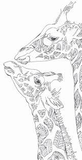 Coloring Pages Printable Adult Book Giraffe Door ValrArt