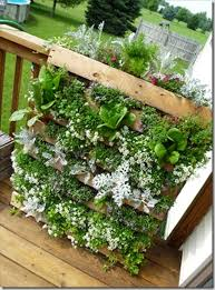 Unique Wood Pallet Vertical Garden Diy Wooden Furniture