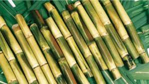 Fresh Pressed Sugar Cane Juice Sugarcane