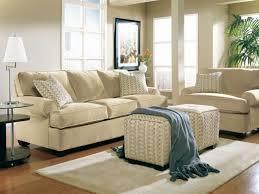 Earth Tones Living Room Design Ideas earth tone paint colors square grey microfiber ottoman brown