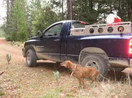 Hunting Rig Pictures...trucks, 4-wheelers, Etc - BigGameHoundsmen.com Old School Alaskan Dog Box Fuelbox Offers Threeinone Convience Medium Duty Work Truck Bed Boxes Korrectkritterscom 2018 Titan Pickup Accsories Nissan Usa Looking Beds Ross Metal Works Dog Boxes Posts Facebook Tamikgordons On Twitter If You Have A Cap Your Truck This The Box Dimeions Biggahoundsmencom Buddy L Rival Food 1938140837 Products Ole Dry Pond Youtube