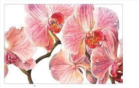 S And Wallpaper Hydrangea Rosie Flower Truck My Board I Must