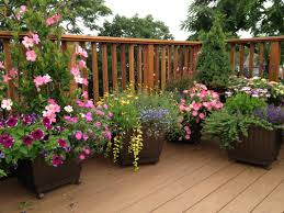 Pot Garden Ideas dunneiv