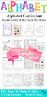 Pumpkin Stages Of Growth Worksheet by Butterfly Preschool Printables