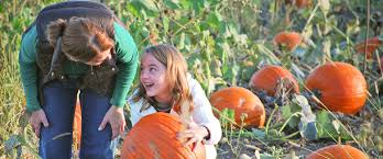Lamberts Pumpkin Patch Topeka Ks by Arbor Day Farm Families Schools And Companies Connect With