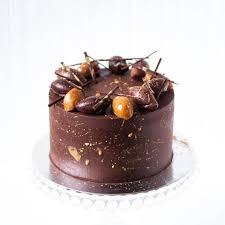 chocolate salted caramel cake cakes bakes