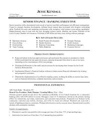 Vice President Of Finance Resume Free Bank VP Example