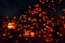 Roger Williams Pumpkin Spectacular 2017 by 18 Amazing Facts And Stories About Halloween You U0027ve Probably Never