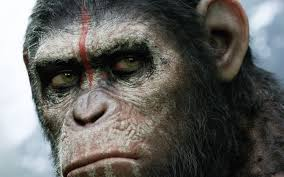 High Resolution Wallpapers Widescreen Dawn Of The Planet Of The Apes Closer Look Dawn Of The Planet Apes Series 1 Action 2014 Dawn Of The Planet Apes Behindthescenes Video Collider 104 Best Images On Pinterest The One Last Chance For Peace A Review Concept Art 3d Bluray Review High Def Digest Trailer 2 Tims Film Amazoncom Gary Oldman