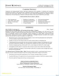 Company Background Example Unique Resume Templates Business ... Chronological Resume Samples Writing Guide Rg Chronological Resume Format Samples Sinma Reverse Template Examples Sample Format Cna Mplate With Relevant Experience Publicado 9 Word Vs Functional Rumes Yuparmagdalene 012 Free Templates Microsoft Hudson Nofordnation Wonderfully Ideas Of