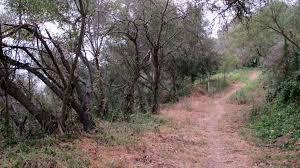 100 Toro Canyon Silent Hiker