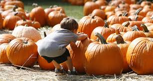 Pumpkin Patch Wetumpka Alabama by Central Alabama U0027s 2015 Guide To Pumpkin Patches Corn Mazes And