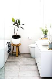 Small Plants For The Bathroom by Classy Artificial Plants For Bathrooms Indoor Plants For Bathroom