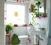 Plants For Bathrooms With No Light by House Plant Humidifier Bathroom Good Plants For Fresh And Dramatic