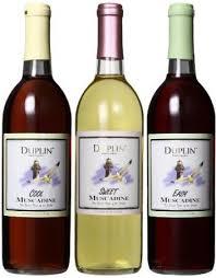 Wine Themed Kitchen Set by Best 25 Wine Kitchen Themes Ideas On Wine Theme