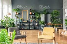 grau und gelb sessel im wohnzimmer interieur mit pflanzen auf metallständer gegen schwarze wand stockfoto und mehr bilder botanik